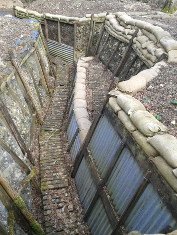 Thiepval Wood trenches 3